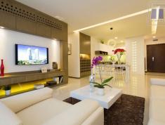 Cho thuê căn hộ Lexington (1phòng - 12tr/ 2 phòng - 16tr/ 3 phòng - 20 triệu) nhà đẹp, nội thất mới