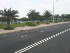 80m2 đất ngay chợ Phú Hữu, Nguyễn Duy Trinh, sổ sẵn, giáp quận 2