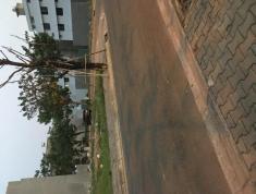 Bán đất diện tích lớn trên đường Song Hành Xa Lộ quận 2, pháp lý: sổ hồng riêng xây dựng tự do