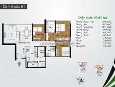 Bán căn hộ cao cấp 2 phòng ngủ, diện tích 99m2, dự The Ascent Quận 2
