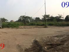 Cho thuê đất gấp ở đường Lương Định Của, P. Bình An, Q2. Giá 100 triệu/tháng