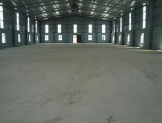 Cho thuê kho, nhà xưởng diện tích đa dạng tại KCN Cát Lái, quận 2, Tp.HCM