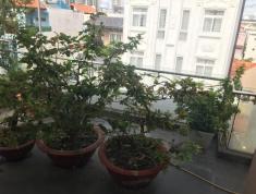 Đất trống đường Số 31, P. An Phú, Quận 2, cần cho thuê