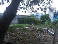 Cần bán lô đất thổ cư, Quốc Hương, Thảo Điền, Quận 2, diện tích 140m2