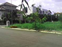 Chính chủ không ở nên bán 2 lô đất MT đường 63, Thảo Điền, SHR, bao CC XD tự do
