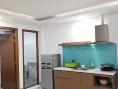 Cho thuê căn hộ full nội thất, 1PN, khu dân cư Thảo Điền, quận 2