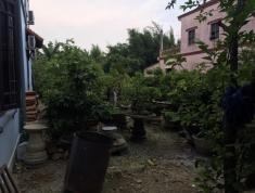 Chính chủ cần bán đất Đường Kinh Dương Vương, Thị trấn Thuận An, Huyện Phú Vang, Thừa Thiên Huế