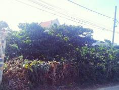 Chính chủ cần bán đất đường Lê Quý Đôn, Thị trấn Di Linh, Huyện Di Linh, Lâm Đồng
