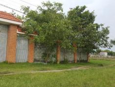 Bán Biệt Thự Cổ Nhà vườn Mỹ Hạnh Nam,Long An, SHR, Dt 1637m2, giá 6tr/m2