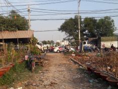 Bán Đất Giá Rẻ Đường Võ Văn Vân, Âp 1,  Xã Vĩnh Lộc B, Huyện Bình Chánh, TP. Hồ Chí Minh