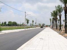 Cấn bán đất nền Trung tâm Phú Mỹ, Thổ Cư 100%