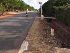 Đất mặt tiền tỉnh lộ 328, ấp 6, Hòa Binh, chính chủ