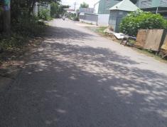 Bán lô đất Mt đường số 4 song song với đường Trần Văn Giàu, Bình Chánh