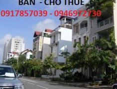 Cho thuê nhà mặt tiền đường Cao Triều Phát, khu Hưng Gia Hưng Phước, Phú Mỹ Hưng.