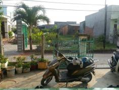 Chính Chủ Cần Bán Gấp Nhà Tại KCN Phan Thiết ( Sau Lưng Nhà Máy Đèn ) Xã Hàm Liêm, Huyện Hàm Thuận