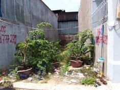 Chính chủ cần bán đất nền phường Long Thạnh Mỹ, quận 9, Tp. Hồ Chí Minh