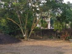 Gia đình cần bán lô đất vuông vắn rất đẹp tại ngõ 210, P. Phú Xá, Tp.Thái Nguyên