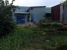 Chính chủ cần bán đất Tx. 14, Thạnh Xuân, Quận 12, Tp.Hồ Chí Minh