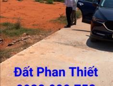 Bán đất ngay UBND xã Hàm Thắng, chỉ 450 triệu 100m2. ĐẤT SỐT.
