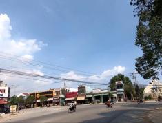 Cần bán miếng đất thổ cư 100% tại Cần Giuộc,1260m2,mặt tiền đường nhựa 14m