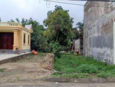 Chính chủ cần bán đất Xã Đặng Cương, Huyện An Dương, Hải Phòng