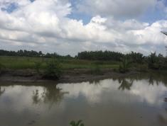 Chính chủ cần bán đất PHú Hữu,Nhơn Trạch , Đồng Nai