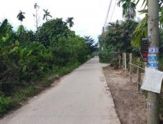 Chính chủ cần bán đất tại Đường Hương lộ 2, Xã Tam An, Huyện Long Thành, Đồng Nai