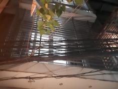 Nhà mới, kinh doanh, ga ra ô tô, Khương Trung, Thanh Xuân, 48 m2, 5 tầng, mặt tiền 4.7m, giá rẻ