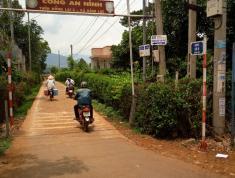 Bán 800 m2 đất thổ vườn, ngang 8m dài 100m ở Xã Đinh Lạc - Huyện Di Linh