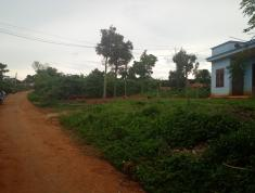Bán 1000 m2 đất thổ vườn ngang 10m dài 100m ở Thôn Đồng Lạc 3 - Xã Đinh Lạc - Huyện Di Linh