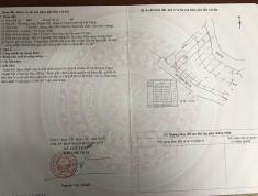 Chính chủ bán, shr, dt 136,9m2 đường 28 Nguyễn Xiển.