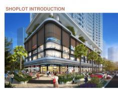 Anh Chị cần đầu tư shophouse? Đừng bỏ lỡ dự án hạng sang Q2 Thảo Điền của Singapore dưới đây