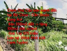 Chính chủ cần bán mảnh Đất cách Bờ Chùa 200m, tl835B 50m tại địa chỉ: Bờ Chùa Cần Giuộc Long An
