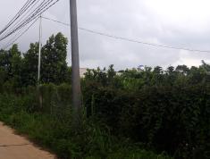 Bán Nhà vườn Xã Xuân Bảo, Cẩm mỹ, Đồng Nai: 0901433596