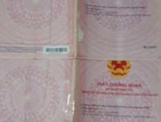 Bán Nhà vườn Xã Xuân tây, Cẩm mỹ, Đồng Nai: 0901433596