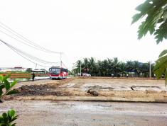 Bán 100m2 đất ( thổ cư) đường Trần Văn Giàu ngay Vườn Thơm Cầu Xáng Bình Chánh