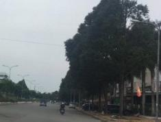 Bán nền giá rẻ KDC Hưng Phú 1, Hưng Phú, Cái Răng, Cần Thơ