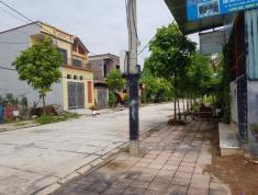 Chính chủ cần tiền kinh doanh bán miếng khu giàn chiếu 88, Tân Thịnh, Xã Hợp Thịnh, Huyện Tam