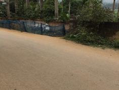 Bán đất trang trại Hòa Lạc, Hà Nội giá từ 1,7tr/m