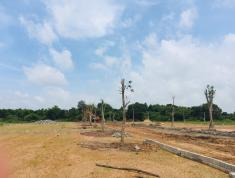 Đất nền giá rẻ ven biển Hồ Tràm -Vũng Tàu