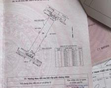 Chính chủ cần bán 2 thửa đất tại Đường số 10, Phường Hiệp Bình Phước, Quận Thủ Đức, TP. Hồ Chí Minh