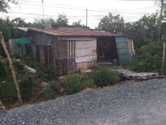 Chính Chủ Cần Bán Gấp đất SHR thị trấn Tân Túc 207m2, Hẻm 5 mét, H.Bình Chánh , HCM