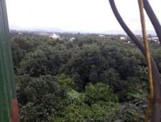Cần Bán Lô Đất đẹp Tại Thôn 15 ,Xã Hòa Ninh ,Huyện Di Linh ,T Lâm Đồng