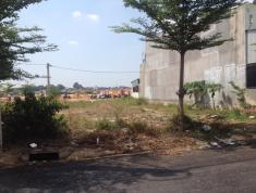 Đất xã Long Hưng, Biên Hòa, Đồng Nai cần bán 100m2 giá chỉ 18tr/m2