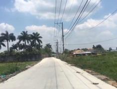 Bán 100m2 thổ cư kdc long đức, tỉnh đồng nai, hạ tầng hoàn thiện. Giá 700 triệu. Lh 0908357115