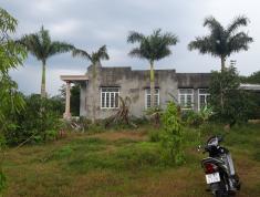 Chính chủ cần bán đất đã xây nhà cấp 4 kiên cố tại Xuân Lộc, Đồng Nai