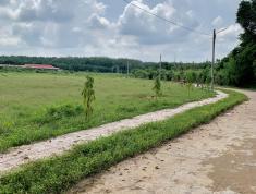 Với 555tr sở hữu ngay  lô đất thị trấn Chơn Thành, thổ cư, sổ hồng riêng từng nền