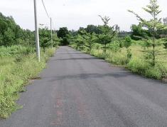 Cần bán đất khu dân cư Lò Gốm, sau UBND xã Lộc An, SHR,thổ cư