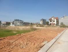 Đất nền Quảng Ninh chỉ từ 6tr/m2. Cơ hội sinh lời 20-50%/ năm