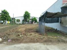 Chính chủ cần bán thửa đất tại Đường Trần Thị Thơm, Phường 9, Thành phố Mỹ Tho, Tiền Giang